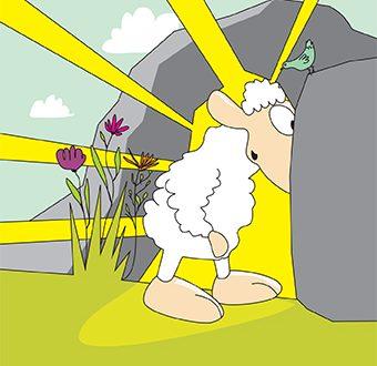 1.04.18 – Niedziela Zmartwychwstania Pańskiego