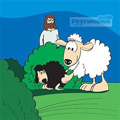 12.05.19 - IV Niedziela Wielkanocna